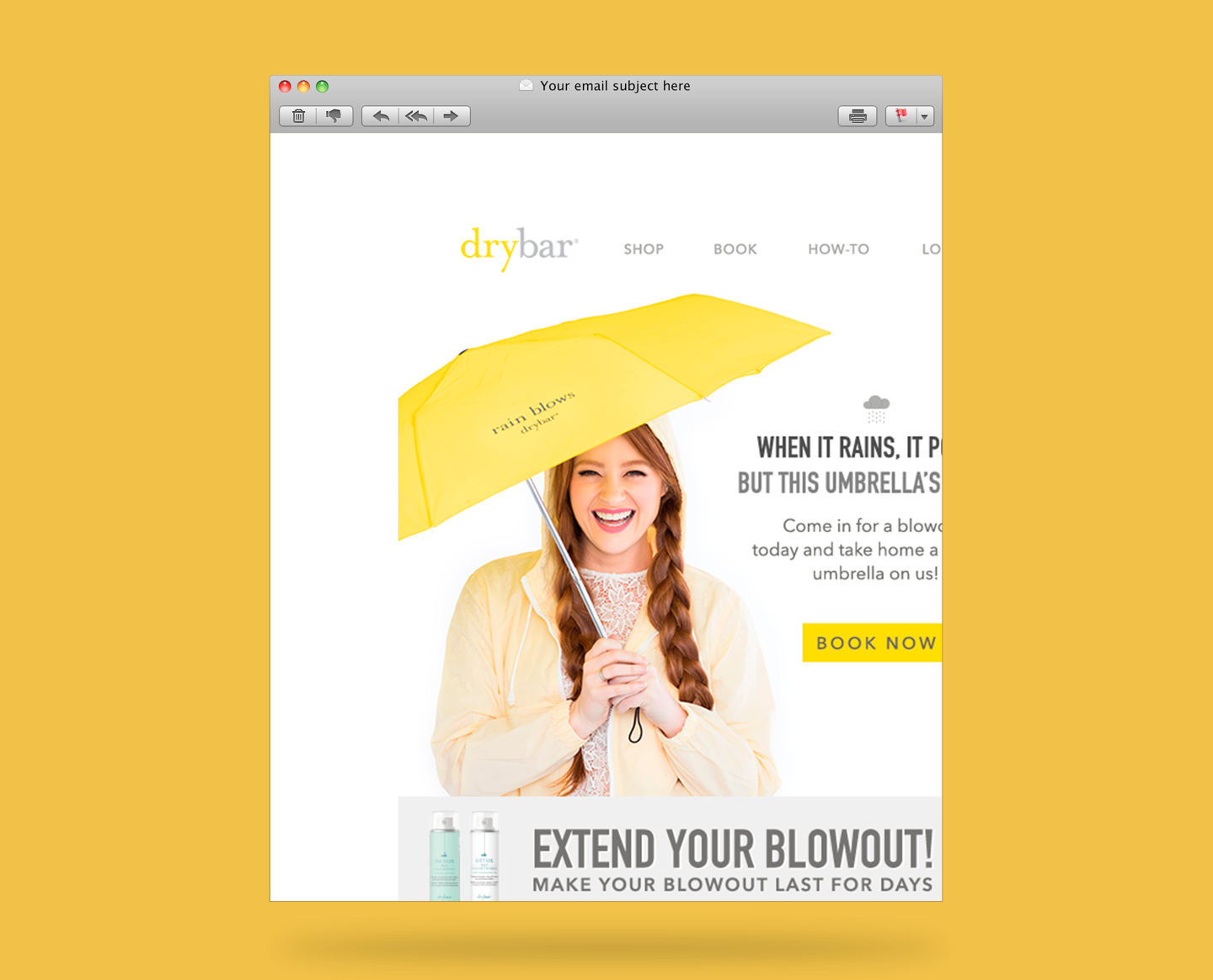 Dry Bar Email Template